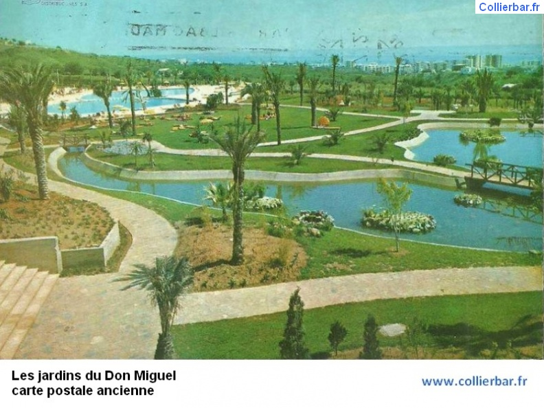 DMG-Jardin don miguel