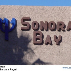 Sonora Bay (Mexique)